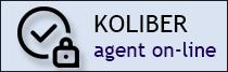 logowanie dla agentów