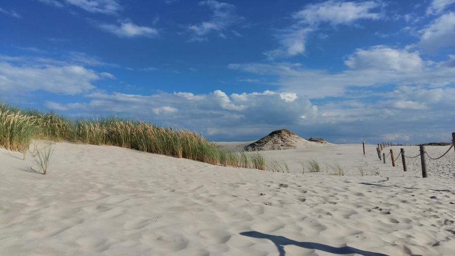 Koliber obóz w łebie plaża